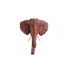 Cabeça de Elefante Suar