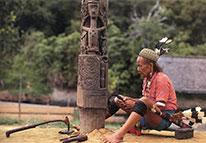 Primitivo Papua Guiné