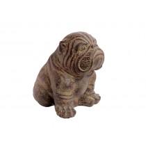 Cachorro Buldog em Pedra