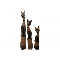 Trio de Gatos Coconut 100 80 60 cm