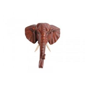 Cabeça de Elefante Natural