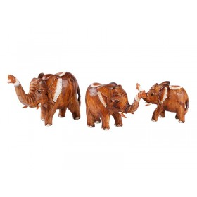 Elefante Madeira Crua