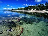 Tahiti Pacífico Paraíso
